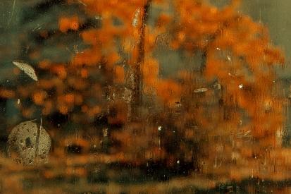 Autumn behind glass