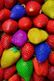 Strawberry chameleon