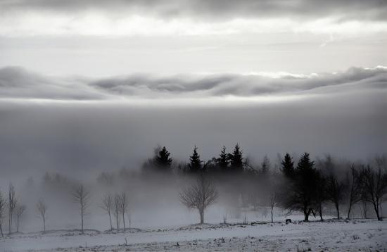 Mountain landscape in the fog
