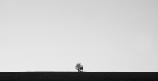 Minimal bw picture high seat with tree
