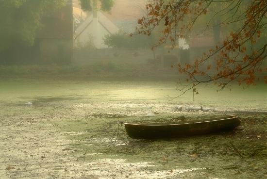 Early haze over village pond