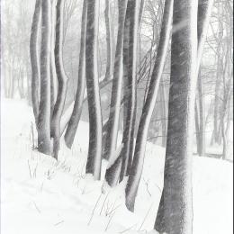 Winter draws